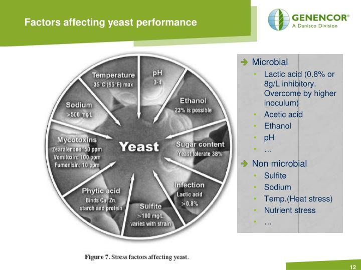 Factors affecting yeast performance