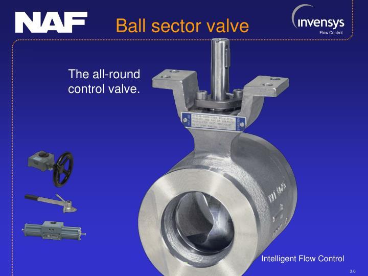 Ball sector valve