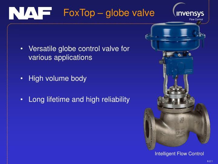 Versatile globe control valve for various applications