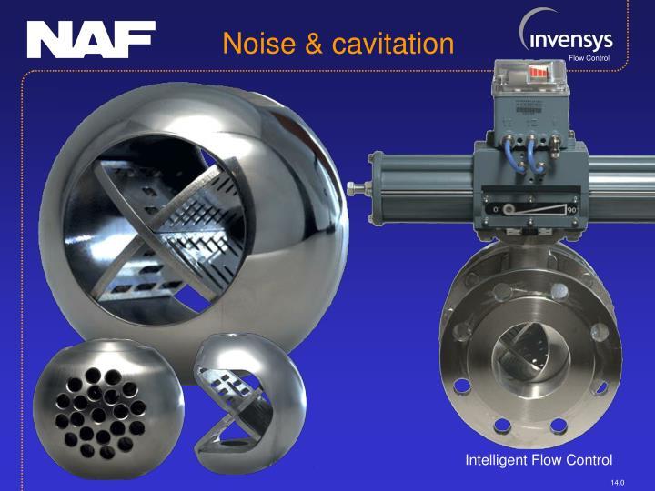 Noise & cavitation