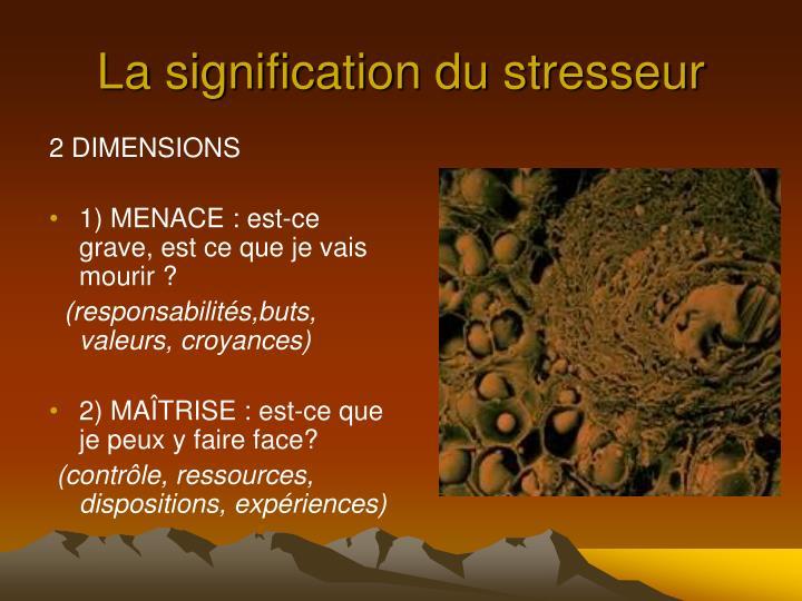 La signification du stresseur