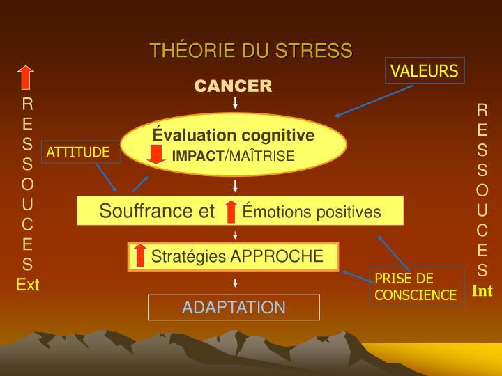 THÉORIE DU STRESS