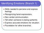 identifying emotions branch 1
