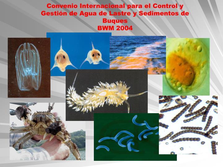 Convenio Internacional para el Control y Gestión de Agua de Lastre y Sedimentos de Buques