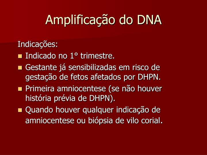 Amplificação do DNA