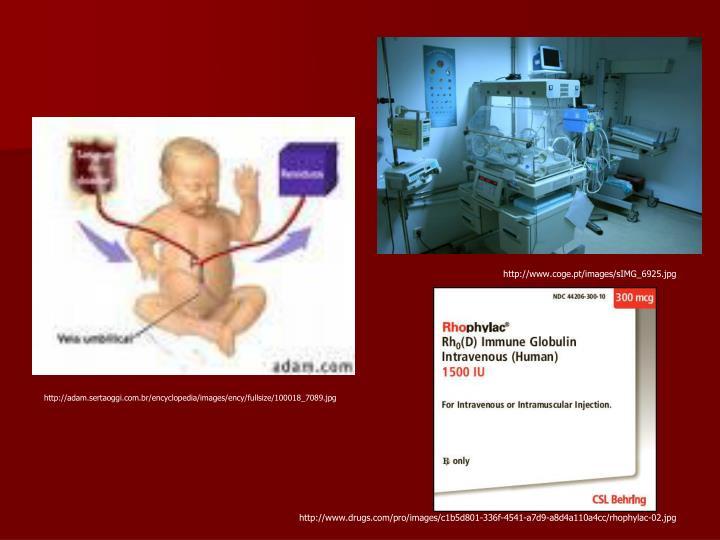 http://www.coge.pt/images/sIMG_6925.jpg