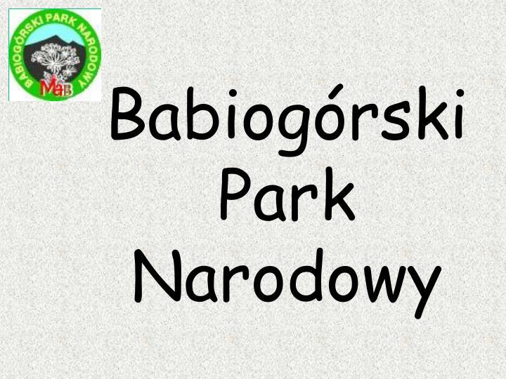 Babiogrski Park Narodowy