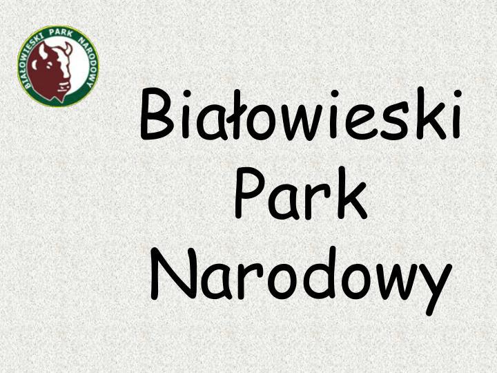 Biaowieski