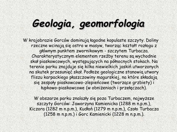 W krajobrazie Gorców dominują łagodne kopulaste szczyty. Doliny rzeczne wcinają się ostro w masyw, tworząc kształt rozłogu z głównym punktem zwornikowym - szczytem Turbacza. Charakterystycznym elementem rzeźby terenu są wychodnie skał piaskowcowych, występujących na północnych stokach. Na terenie parku znajduje się kilka niewielkich jaskiń utworzonych na skutek przesunięć skał. Podłoże geologiczne stanowią utwory fliszu karpackiego płaszczowiny magurskiej, na które składają się zespoły piaskowcowo-zlepieńcowe (tworzące grzbiety) i łupkowo-piaskowcowe (w obniżeniach i przełęczach).