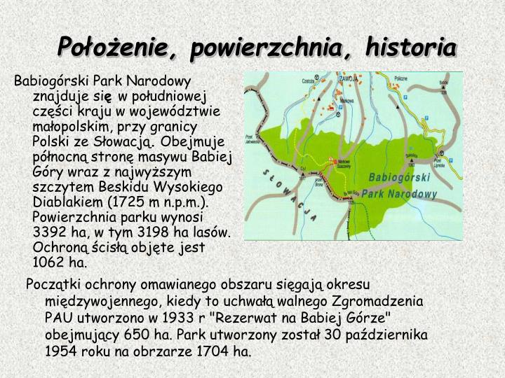 """Początki ochrony omawianego obszaru sięgają okresu międzywojennego, kiedy to uchwałą walnego Zgromadzenia PAU utworzono w 1933 r """"Rezerwat na Babiej Górze"""" obejmujący 650 ha. Park utworzony został 30 października 1954 roku na obrzarze 1704 ha."""