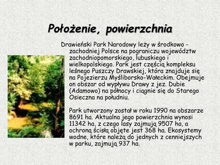Drawieński Park Narodowy leży w środkowo - zachodniej Polsce na pograniczu województw zachodniopomorskiego, lubuskiego i wielkopolskiego. Park jest częścią kompleksu leśnego Puszczy Drawskiej, która znajduje się na Pojezierzu Myśliborsko-Wałeckim. Obejmuje on obszar od wypływu Drawy z jez. Dubie (Adamowo) na północy i ciągnie się do Starego Osieczna na południu.