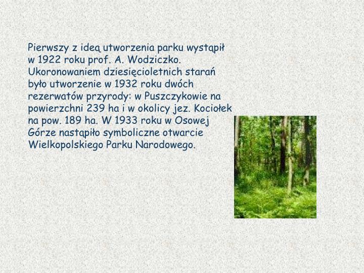 Pierwszy z ideą utworzenia parku wystąpił w 1922 roku prof. A. Wodziczko. Ukoronowaniem dziesięcioletnich starań było utworzenie w 1932 roku dwóch rezerwatów przyrody: w Puszczykowie na powierzchni 239 ha i w okolicy jez. Kociołek na pow. 189 ha. W 1933 roku w Osowej Górze nastąpiło symboliczne otwarcie Wielkopolskiego Parku Narodowego.