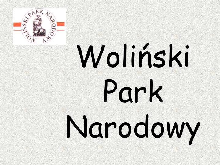 Woliński