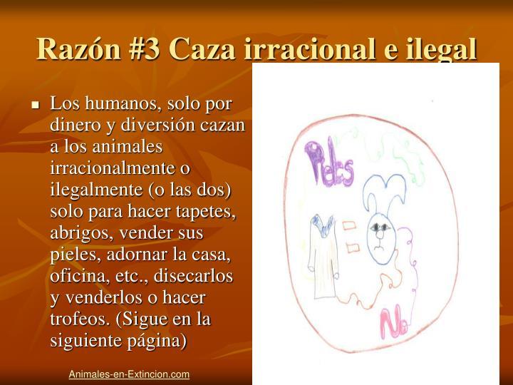 Razón #3 Caza irracional e ilegal