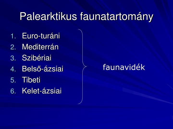Palearktikus faunatartomány