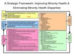a strategic framework improving minority health eliminating minority health disparities