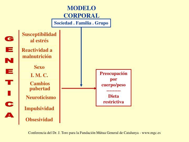 MODELO CORPORAL
