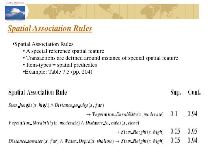 Spatial Association Rules