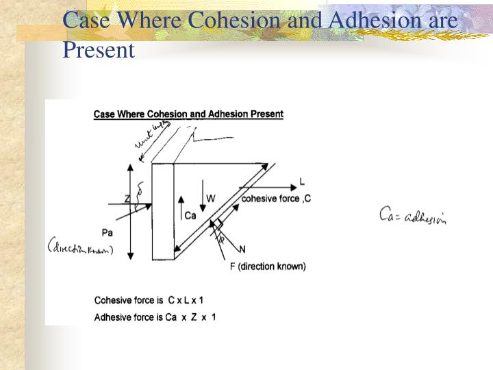 Case Where Cohesion and Adhesion are Present