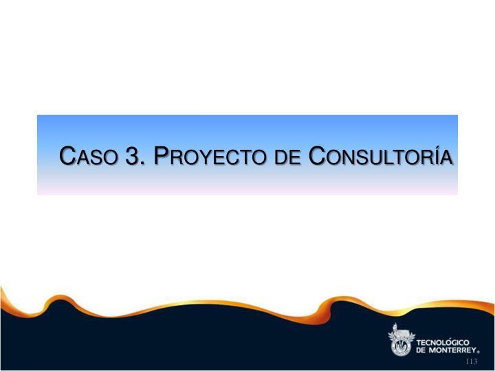 Caso 3. Proyecto de Consultoría