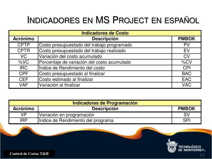 Indicadores en MS Project en español