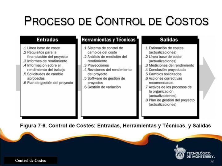 Proceso de Control de Costos