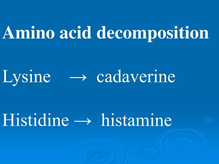 Amino acid decomposition