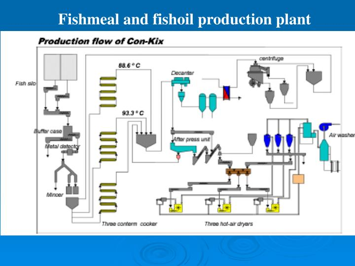 Fishmeal and fishoil production plant