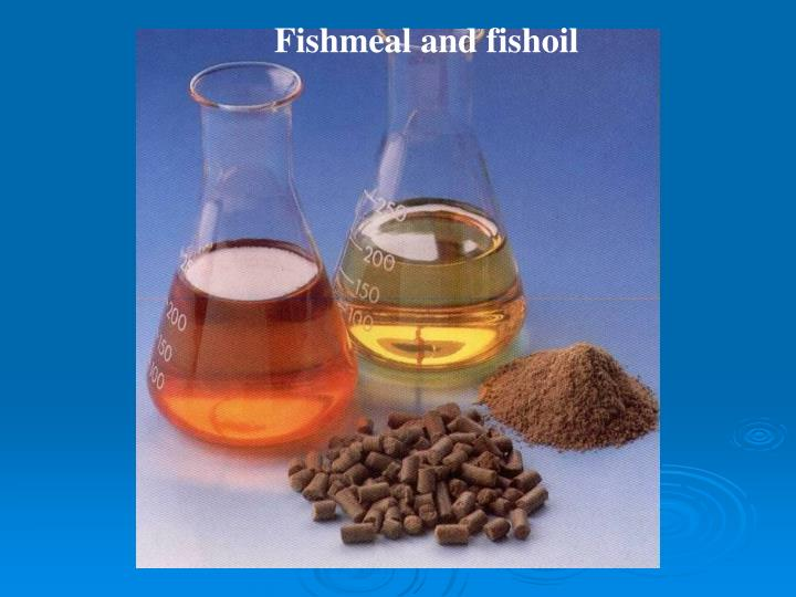 Fishmeal and fishoil