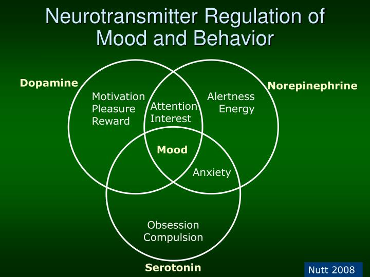 Neurotransmitter Regulation of Mood and Behavior