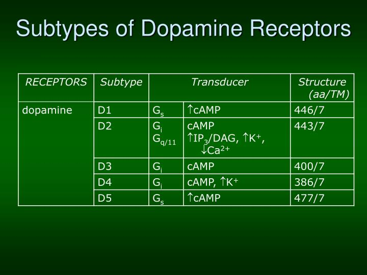 Subtypes of Dopamine Receptors