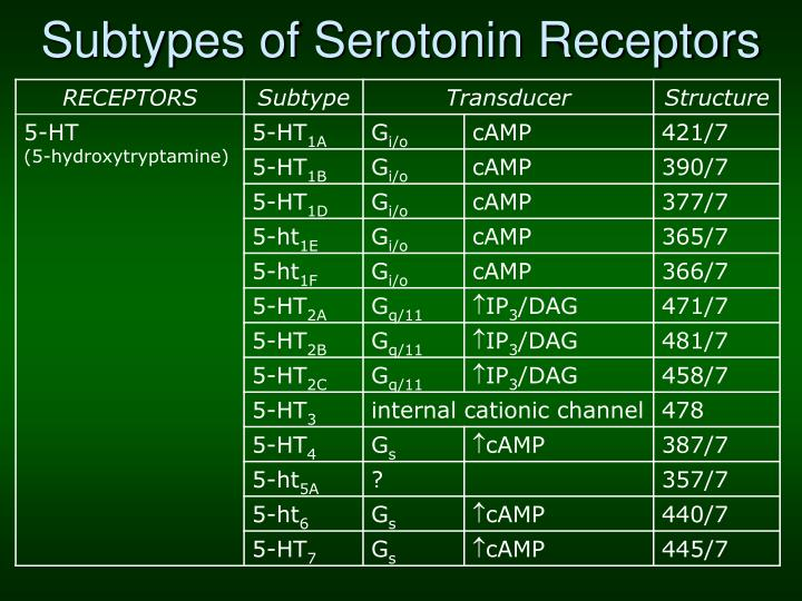 Subtypes of Serotonin Receptors