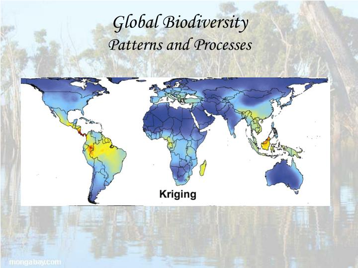 Global biodiversity patterns and processes
