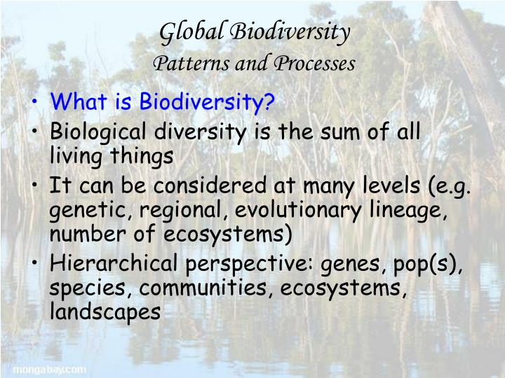 Global biodiversity patterns and processes1