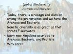 global biodiversity patterns and processes23