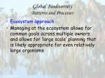 global biodiversity patterns and processes32