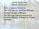 global biodiversity patterns and processes41