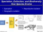 speciation extinction and biodiversity how species evolve