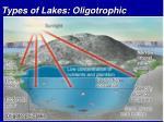 types of lakes oligotrophic