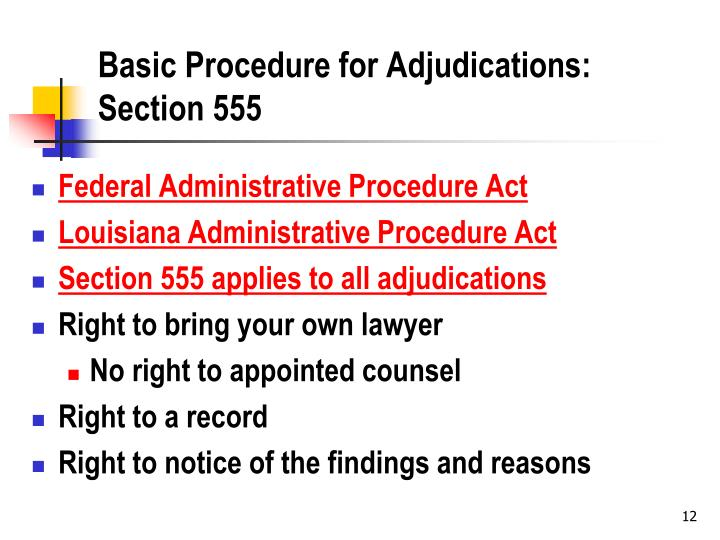 Basic Procedure for Adjudications: