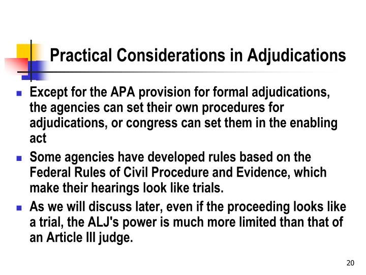 Practical Considerations in Adjudications