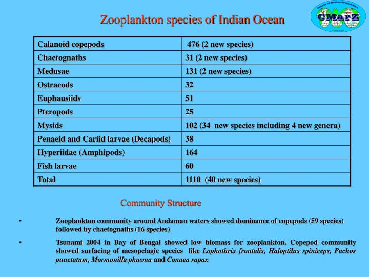Zooplankton species of Indian Ocean
