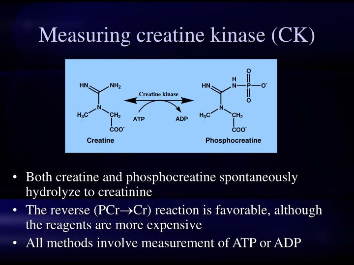 Measuring creatine kinase (CK)