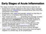 early stages of acute inflammation1