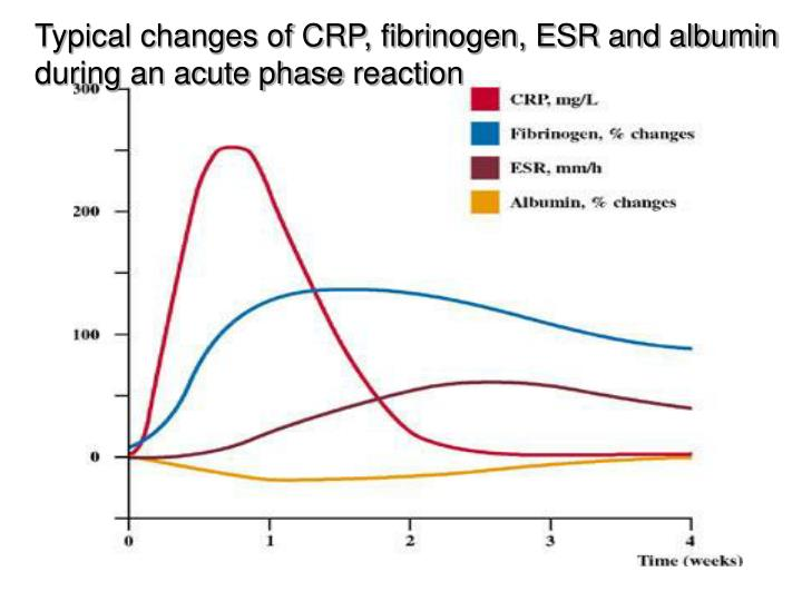 Typical changes of CRP, fibrinogen, ESR and albumin during an acute phase