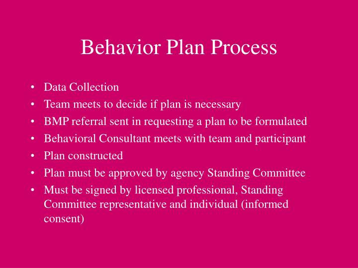 Behavior Plan Process