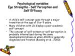 psychological variables ego strengths self perception and self efficacy