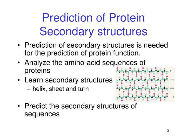 Prediction of Protein Secondary structures