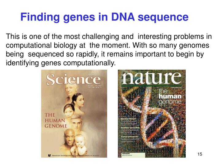 Finding genes in DNA sequence