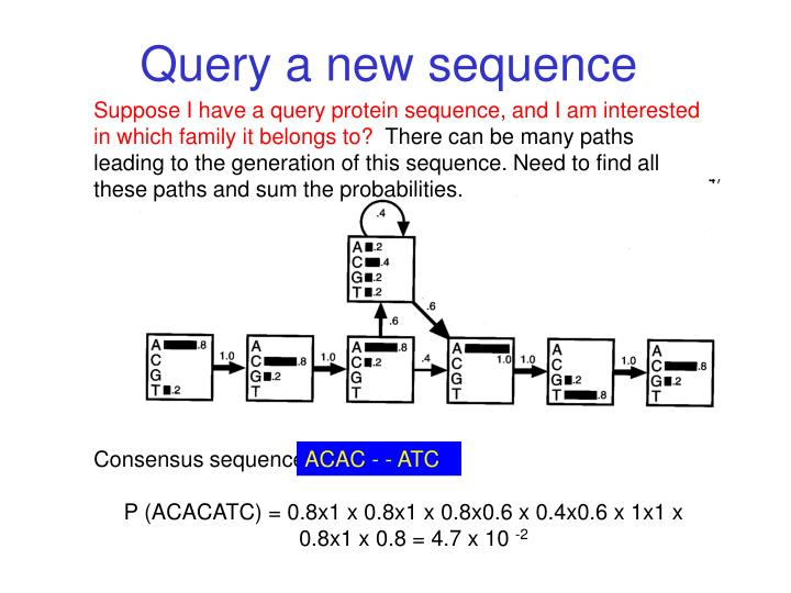 Query a new sequence